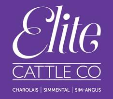 Elite Charolais & Simmental Bull Sale