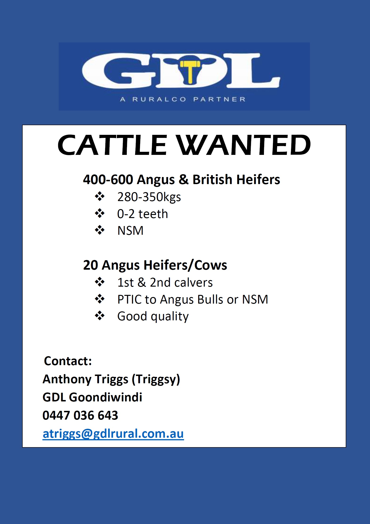 CATTLE WANTED