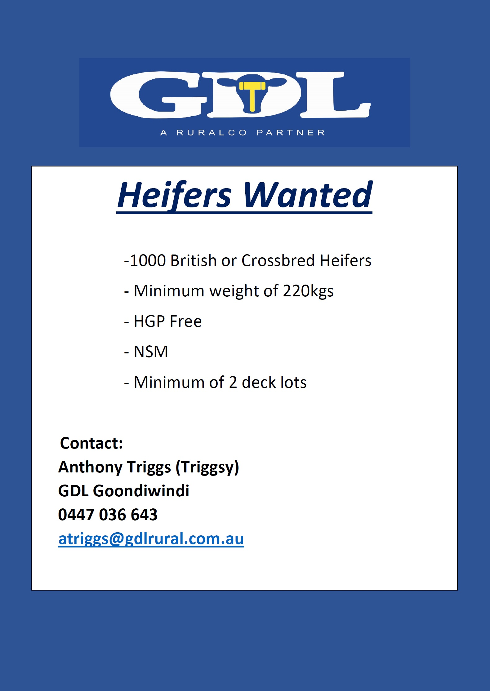 HEIFERS WANTED