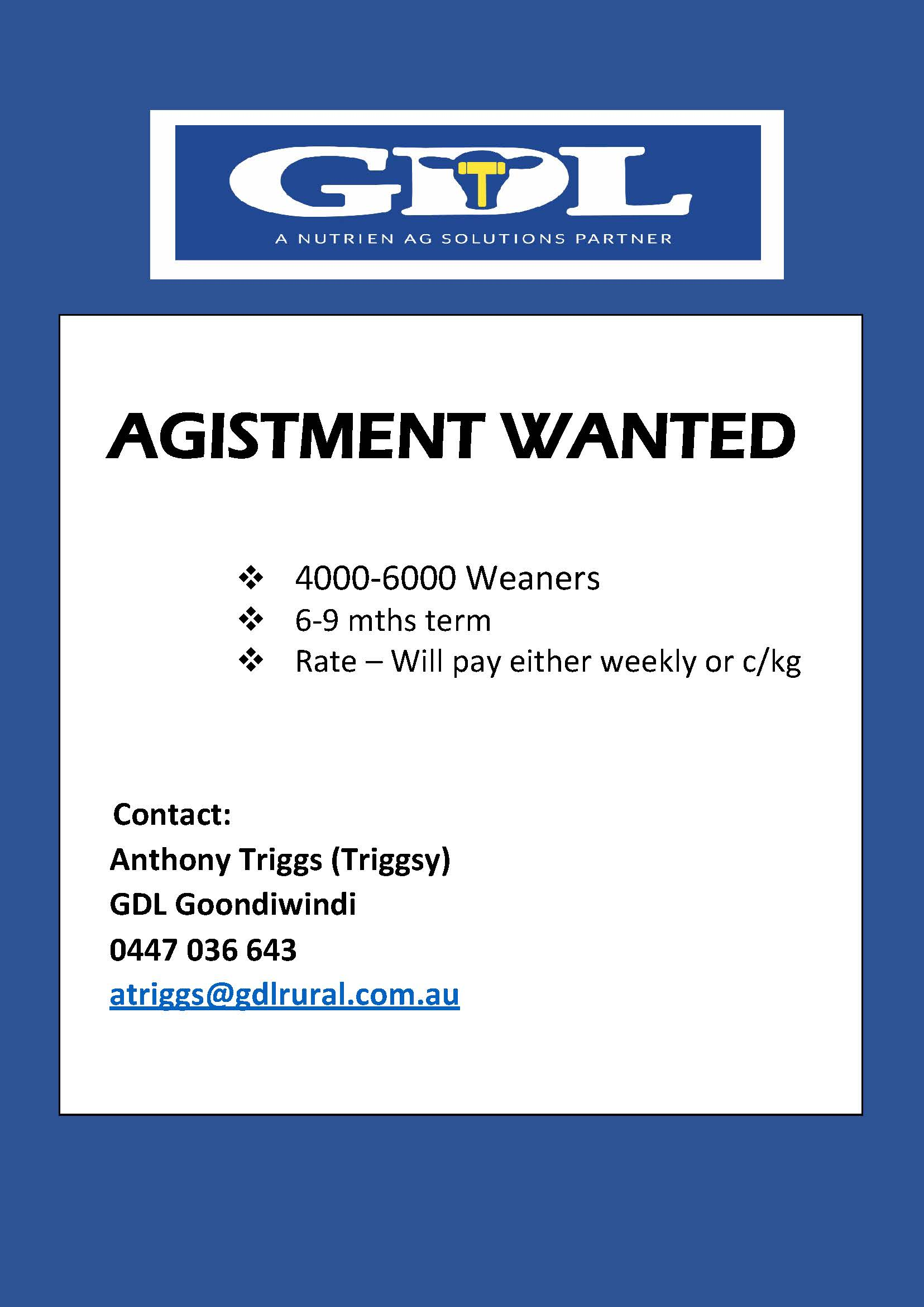 Agistment Wanted