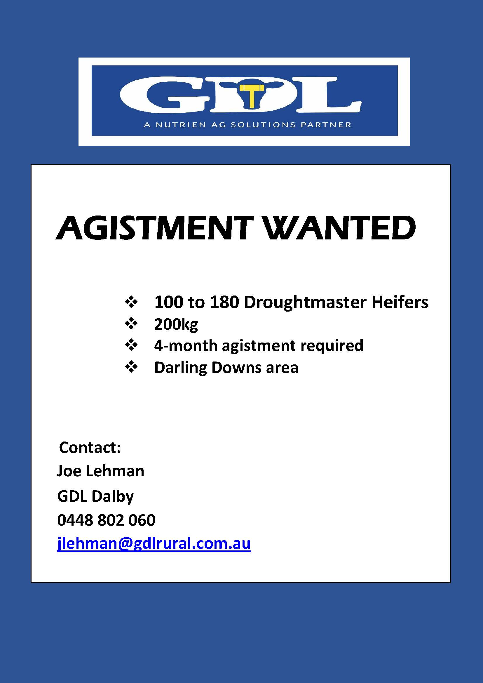 Agistment Wanted – Darling Downs Area QLD