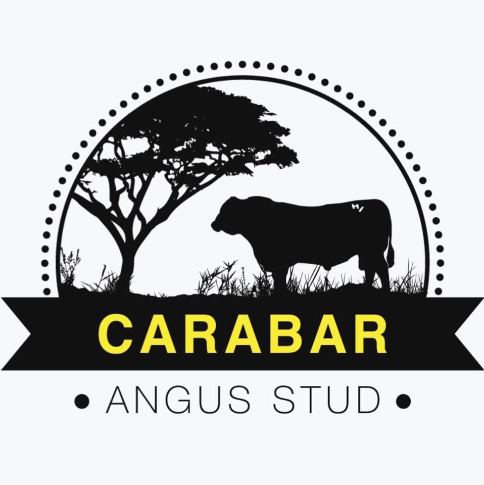 Carabar Angus Annual Bull Sale 2021