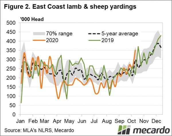 East coast lamb and sheep yardings