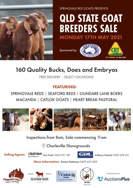 The QLD State Goat Breeders Sale